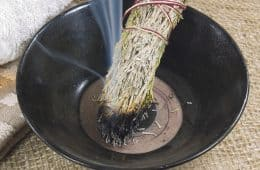How to make a sage smudge stick